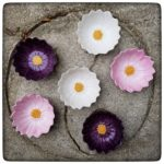 New in the shop: Daisy Bowls