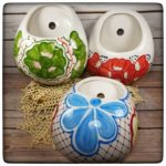 This Week Only: Wall planter/vases