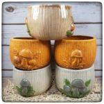 This Week Only: Mushroom Bowls