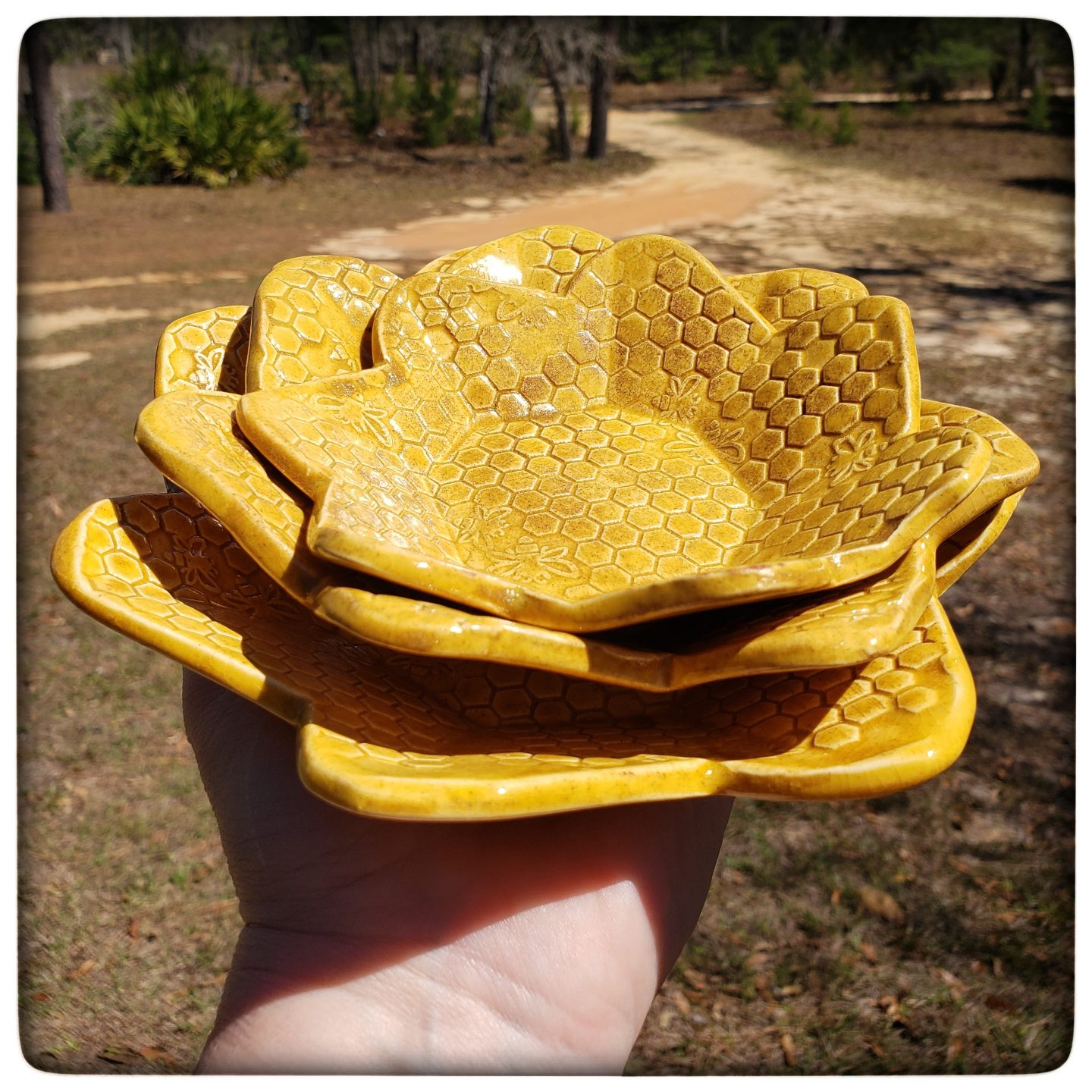 This Week Only: Honeycomb Nesting Dishes